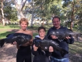 The Macca family, Jarod, Brad & Scott (Mosman Whalers) with a brace of Rock Blackfish 3.495kg, 3.990kg & 4.080kg