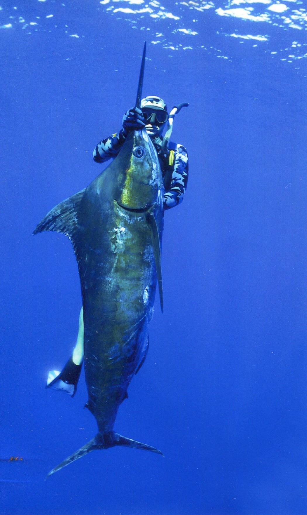 Brett Vercoe 78kg Blue Marlin